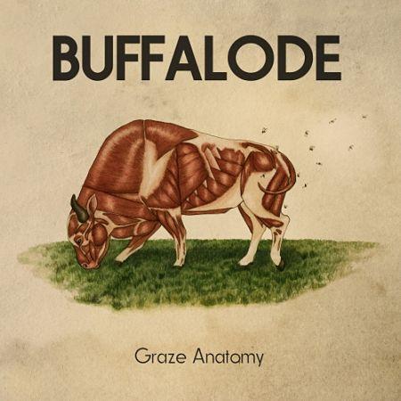 Buffalode - Graze Anatomy (2017) 320 kbps