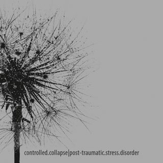 Controlled Collapse - Post-Traumatic Stress Disorder (2017) 320 kbps