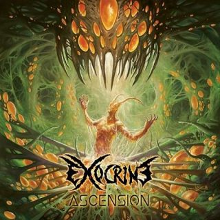 Exocrine - Ascension (2017) 320 kbps