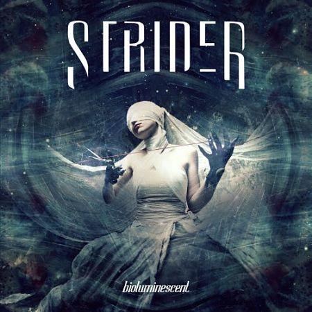 Strider - Bioluminescent (2017) 320 kbps