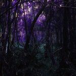 Torched Ebony Skies – Tabula Rasa / Nocuous Keloid (2017) 320 kbps