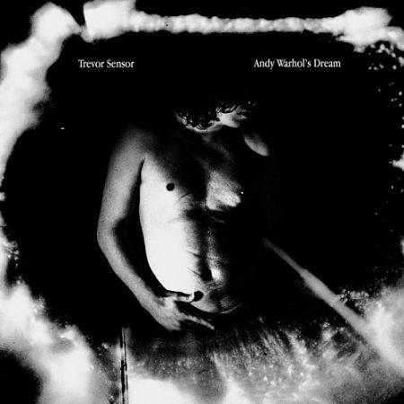 Trevor Sensor - Andy Warhol's Dream (2017) 320 kbps