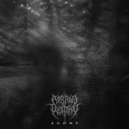 Afraid Of Destiny - Agony (2017) 320 kbps