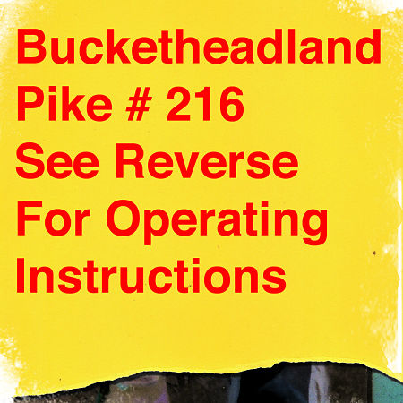Buckethead - Pike 216: Wheels of Ferris (2015) 320 kbps