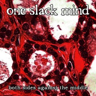 One Slack Mind - Both Sides Against the Middle (2017) 320 kbps