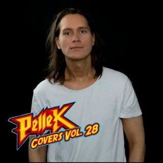 PelleK - Covers, Vol. 28 (2017) 320 kbps
