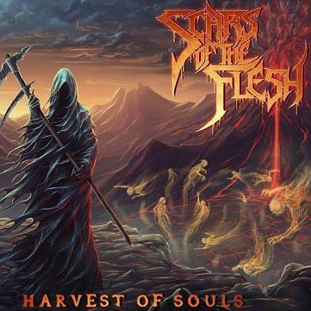Scars Of The Flesh - Harvest Of Souls (2017) 320 kbps