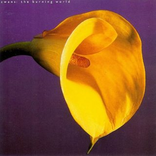 Swans - The Burning World (1989) 320 kbps