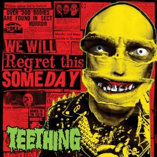 Teething - We Will Regret This Someday (2017) 320 kbps
