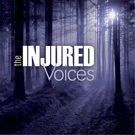 The Injured - Voices (2017) 320 kbps