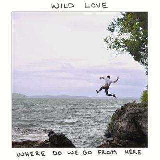 Wild Love - Where Do We Go from Here (2017) 320 kbps