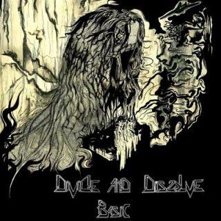Divide And Dissolve - Basic (2017) 320 kbps