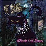 II Big - Black Cat Bone (2017) 320 kbps