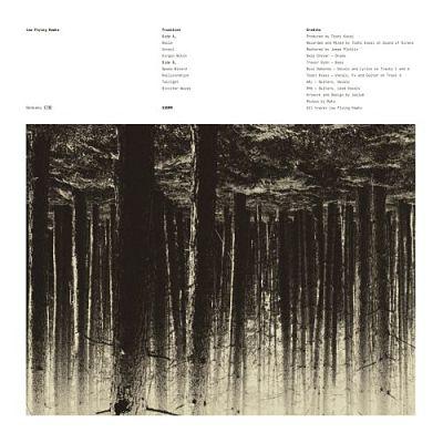 Low Flying Hawks (Melvins, Mr. Bungle) - Genkaku 幻覚 (2017) 320 kbps