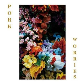 Pork - Worries (2017) 320 kbps