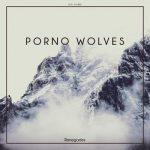 Porno Wolves - Renegades (2017) 320 kbps
