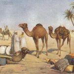 Vintage Cucumber - Arabische Nachte (2017) 320 kbps
