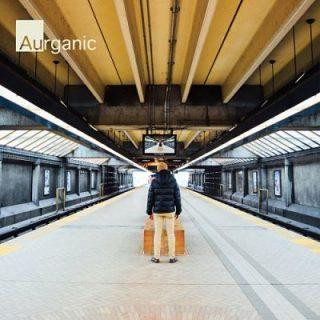 Aurganic - Distant Echoes & Close Encounters (2017) 320 kbps