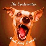 The Spidermites – Mad Dog Driver (2017) 320 kbps