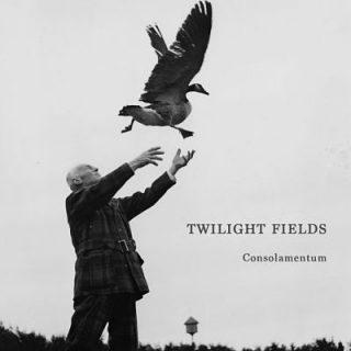 Twilight Fields - Consolamentum (2017) 320 kbps