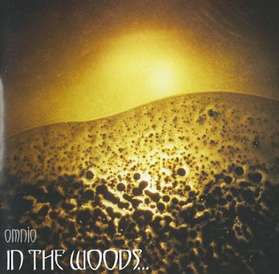 In the Woods    - Discography (1995-2016) 320 kbps + Scans