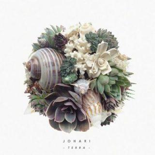 Johari - Terra (2017) 320 kbps