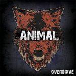 Overdrive - Animal (2017) 320 kbps