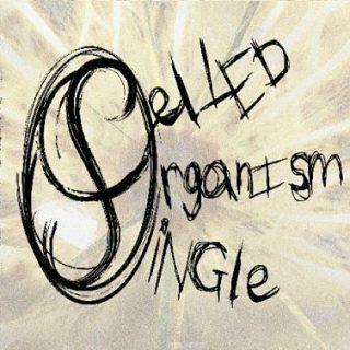 Single Celled Organism (feat.Isgaard) - Splinter In The Eye (2017) 320 kbps