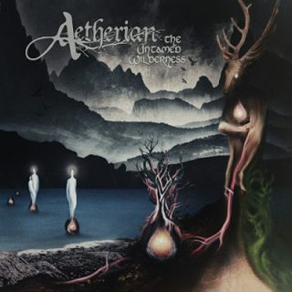 Aetherian - The Untamed Wilderness (2017) 320 kbps
