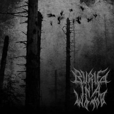 Buried in a Womb - Prenatal Suicide (2017) 320 kbps