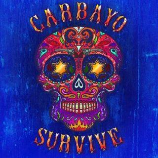 Carbayo - Survive (2017) 320 kbps