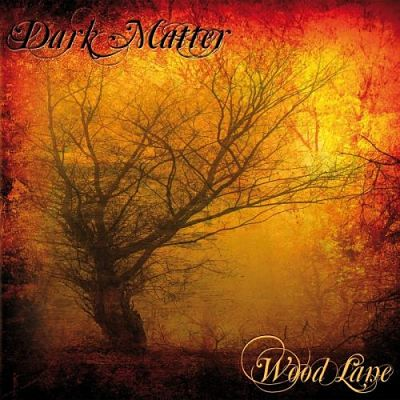 Dark Matter - Wood Lane (2017) 320 kbps