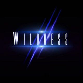 Wildness - Wildness (2017) 320 kbps