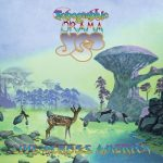 Yes – Topographic Drama: Live Across America (2017) 320 kbps