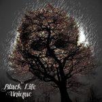 Black Life Unique - Down With Me (2017) 320 kbps
