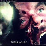 Joe Newnam – Flesh Wound (2017) 320 kbps