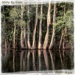 Mary By Force – Water Music (2017) 320 kbps