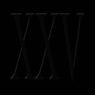 This White Mountain - XXV (2017) 320 kbps