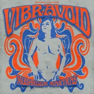 Vibravoid - Mushroom Mantras (2017) 320 kbps