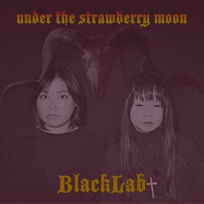 BlackLab - Under the Strawberry Moon (2018) 320 kbps