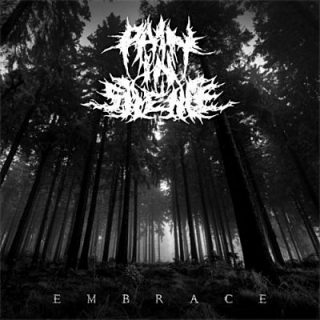 Pain In Silence - Embrace (2018) 320 kbps