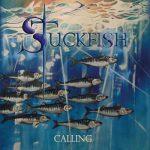 StuckFish – Calling (2018) 320 kbps
