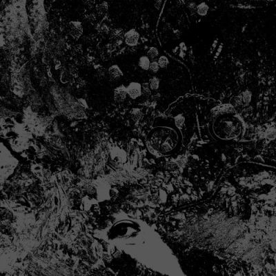 Primitive Man & Unearthly Trance - Split (2018) 320 kbps
