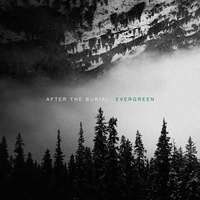 After the Burial - Evergreen (2019) 320 kbps