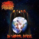 Immortal Insight – I'm Mortal Inside (2019) 320 kbps