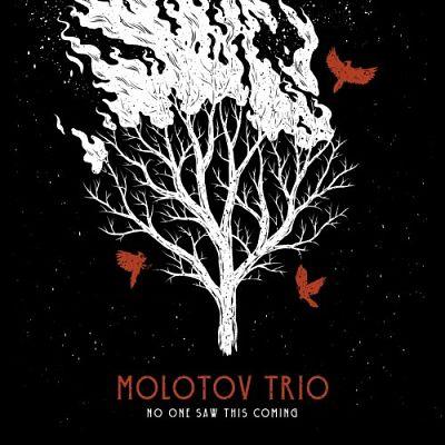Molotov Trio - No One Saw This Coming (2019)