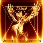 Picture - Wings (2019) 320 kbps