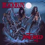 BlackRain - Dying Breed (2019) 320 kbps
