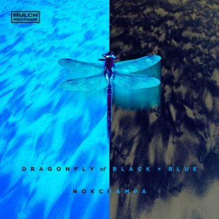 Nokchampa - Dragonfly of Black and Blue (2019)