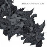 Mitochondrial Sun - Mitochondrial Sun (2020)